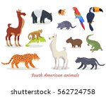 collection of south american... | Shutterstock .eps vector #562724758