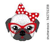 cute french bulldog girl...   Shutterstock .eps vector #562731358