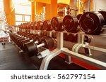various dumbbells in gym | Shutterstock . vector #562797154