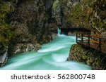vintgar gorge and wooden path... | Shutterstock . vector #562800748