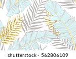 seamless pattern with banana... | Shutterstock .eps vector #562806109