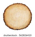 detailed piece of circular flat ... | Shutterstock . vector #562826410
