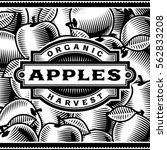 retro apple harvest label black ... | Shutterstock . vector #562833208