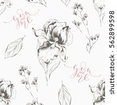 floral hand drawn seamless... | Shutterstock .eps vector #562899598