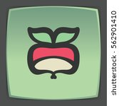 vector outline radish vegetable ... | Shutterstock .eps vector #562901410