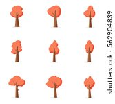 orange tree set collection... | Shutterstock .eps vector #562904839