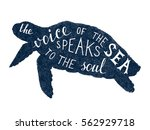 the voice of the sea speaks to... | Shutterstock .eps vector #562929718
