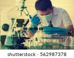 chemist is analyzing sample in...   Shutterstock . vector #562987378