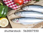 Stock photo sardine 563007550