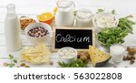 products rich in calcium.... | Shutterstock . vector #563022808