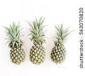 pineapples on white background. ... | Shutterstock . vector #563070820