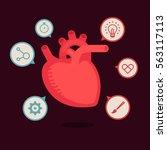 heart vector illustration | Shutterstock .eps vector #563117113