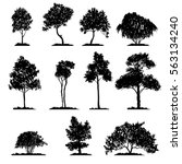 vector set of deciduous trees ... | Shutterstock .eps vector #563134240
