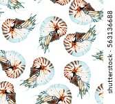 graphic watercolor nautilus... | Shutterstock . vector #563136688