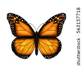 Butterfly With Gradient Mesh ...