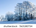 trees in the winter | Shutterstock . vector #563180734