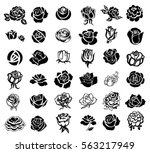 Stock vector set of rose silhouettes design elements 563217949