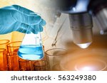 microscope with hand of... | Shutterstock . vector #563249380