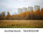 Autumn Landscape With Yellowed...
