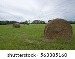 Bales Of Hay On Green Grass In...