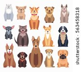 Stock vector different kinds of dog breeds on white distinguished by size form of head tails and noses 563458318