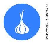 garlic icon black. singe...   Shutterstock .eps vector #563505670