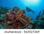 numidia | Shutterstock . vector #563527369
