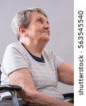 portrait of a happy elderly...   Shutterstock . vector #563545540