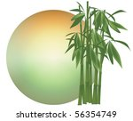 Bamboo Background  Vector ...