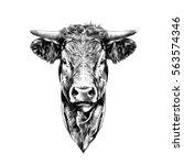 face cow sketch vector | Shutterstock .eps vector #563574346