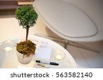 green plant mini tree with... | Shutterstock . vector #563582140