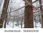 forgotten saw in the forest | Shutterstock . vector #563602420