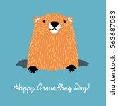 happy groundhog day. cute... | Shutterstock .eps vector #563687083