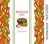 brazil nut vertical seamless... | Shutterstock .eps vector #563713309