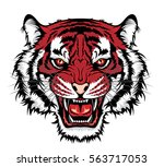 tiger head | Shutterstock .eps vector #563717053