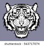 tiger head | Shutterstock .eps vector #563717074