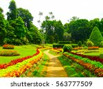 royal botanical garden... | Shutterstock . vector #563777509