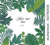 exotic leaves square color frame | Shutterstock .eps vector #563782030