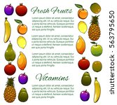 fruits banner. vector fruit... | Shutterstock .eps vector #563795650