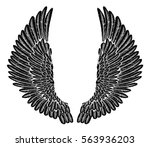 spread set of etched woodcut... | Shutterstock .eps vector #563936203