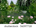 Stock photo rose garden 56397718
