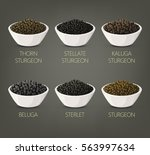 plates with salty food like... | Shutterstock .eps vector #563997634