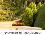 flower garden and pathway in...
