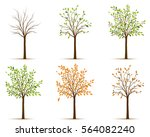 seasons of tree vector | Shutterstock .eps vector #564082240