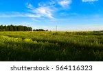 wild nature of russia | Shutterstock . vector #564116323