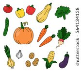 colorful vegetables doodles... | Shutterstock .eps vector #564134128