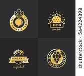organic food gold logo vintage...   Shutterstock .eps vector #564224398