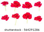 Stock photo red roses 564291286