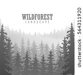 wild coniferous forest... | Shutterstock .eps vector #564311920