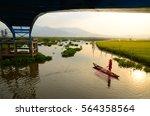 sunset on swamp   Shutterstock . vector #564358564